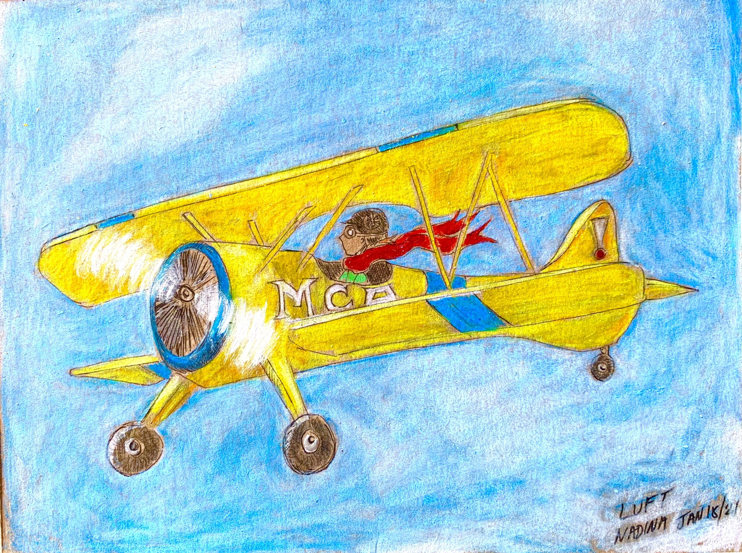 Bi-plane, flight factors, bassoon reed